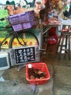 Meat Hawker Mong Kok