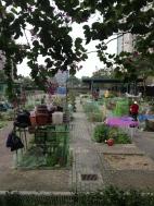 Garden allotments, Mong Kok