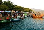 Fish market Sai Kung