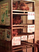 Live chickens available in Tai Po Market.