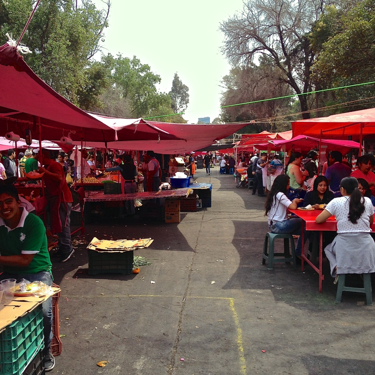 Food, fear and the price of limes in Mexico